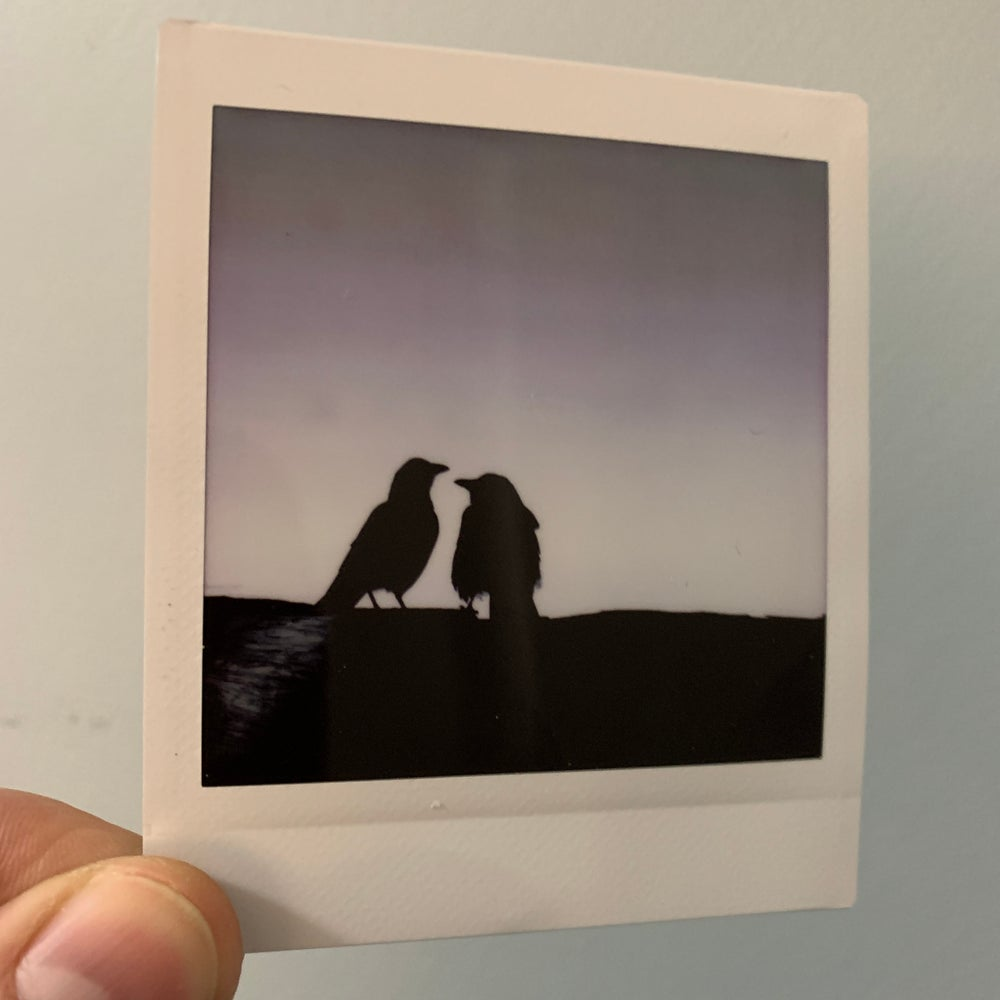 Kissing Crows, NFT Miniprint